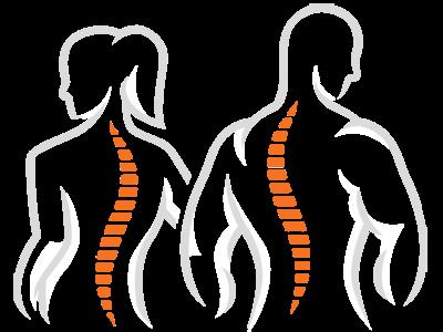 Chiropractic Point Pleasant NJ Spine Figures